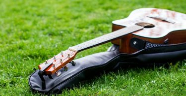Guitar bag on lawn