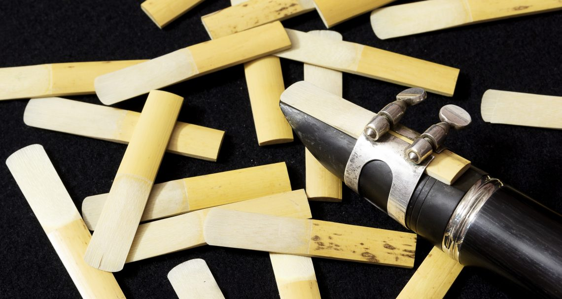A Musician's Review: Which Woodwind Reed is the Best?